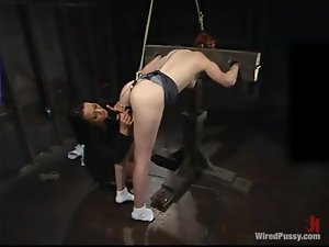 Calico enjoys having wires in her shaved cunt in a hot BDSM scene