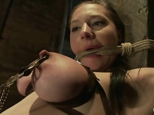 Some refined methods of torturing shown on Maggie Mayhem