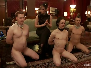 Poor guys get their dicks tortured by nasty mistresses