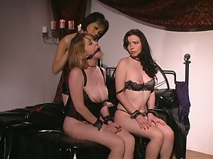 Two lovely chicks lick each others feet and get tied up