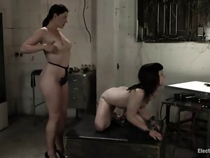 Two divine bitches are going to make some painful love on that slave