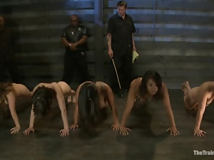 A few cute girls get tortured by a few guys in a basement