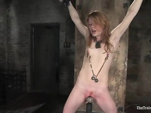 Redhead siren Madison is loving a painful experience