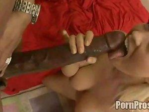 Interracial porn includes blonde woman sucking black cock