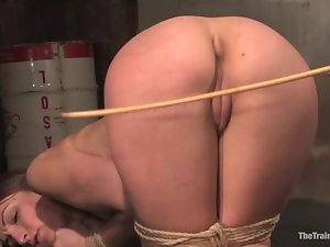 Amber Rayne gets ass fucked and clothespinned in BDSM vid