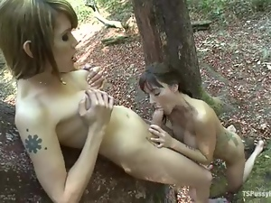 Two cute girls get fucked by two shemales in a forest