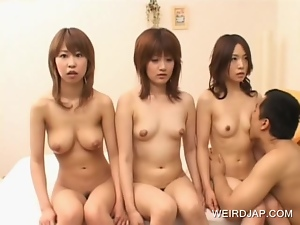 Asian sex dolls getting bodies licked