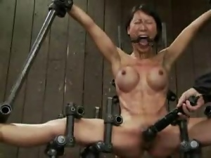 This is a compilation of babes getting in BDSM