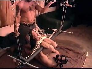 CBT hog tied ball bashing and anal play