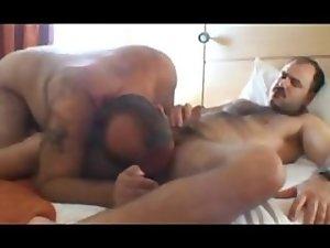 Bears having sex