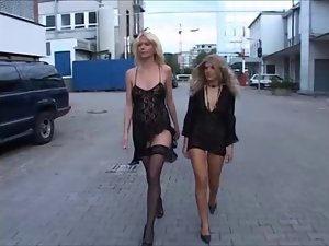Two attractive German Housewives gangbanged part 1