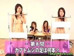 Asian nympho gets vagina toyed