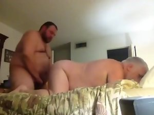 Bear and husband fuck