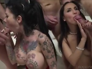 WOW!!! Lots of Tasty Cocks