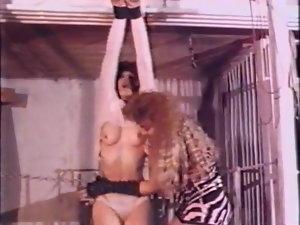 Disciplined 3 (HOM Antique restrain bondage BDSM)